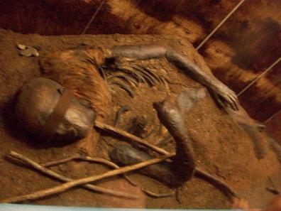 menschliche überreste museum